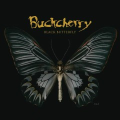Black Butterfly - Buckcherry