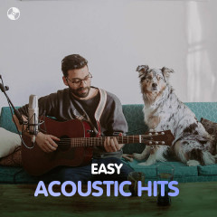 Easy Acoustic Hits