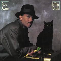 In The Dark (Expanded Edition) - Roy Ayers