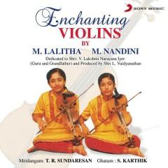 Enchanting Violins