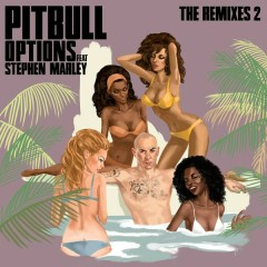 Options (The Remixes 2) - Pitbull, Stephen Marley