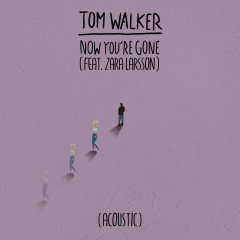 Now You're Gone (Acoustic) - Tom Walker, Zara Larsson