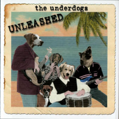 Unleashed - The Underdogs