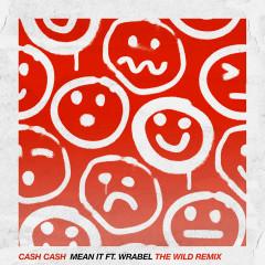 Mean It (feat. Wrabel) [The Wild Remix] - Cash Cash, Wrabel