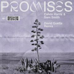 Promises (David Guetta Extended Remix) - Calvin Harris, Sam Smith