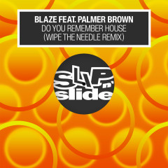 Do You Remember House? (feat. Palmer Brown) [Wipe the Needle Remixes] - Blaze, Palmer Brown