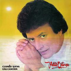 Cuando Suena una Cancíon - Palito Ortega