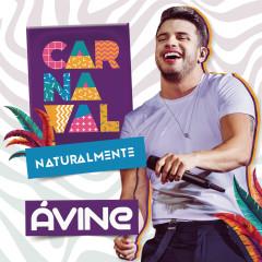 Carnaval Naturalmente - Avine Vinny