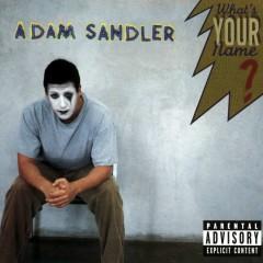What's Your Name? (DMD Album) - Adam Sandler