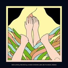 New Love (Mr Belt & Wezol remix)