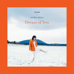 Dream of You (EP) - Punch