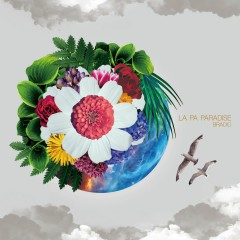 LA PA PARADISE - BRADIO