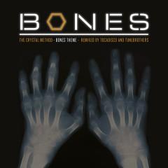 Bones Theme (Remixes) - The Crystal Method
