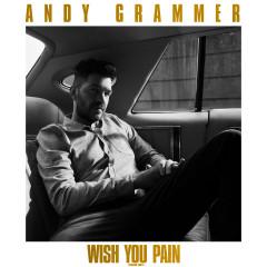 Wish You Pain (Radio Edit) - Andy Grammer