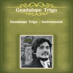 Guadalupe Trigo - Instrumental - Guadalupe Trigo