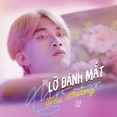 Lỡ Đánh Mất Một Nhịp Yêu Thương (Single)