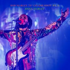 Bob Marley 75th Celebration (Pt.1) (Live) - Ziggy Marley