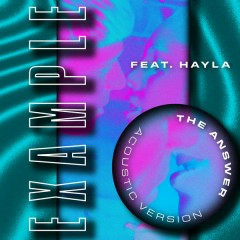 The Answer (Acoustic Version) - Example,Hayla