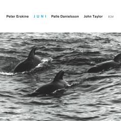 Juni - Peter Erskine, Palle Danielsson, John Taylor