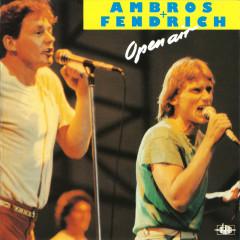 Open Air (Live) - Wolfgang Ambros, Rainhard Fendrich
