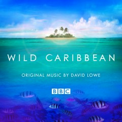 Wild Caribbean - Original Music By David Lowe - David Lowe