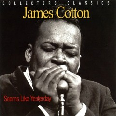 Seems Like Yesterday (Live) - James Cotton