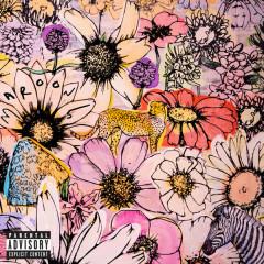 JORDI (Deluxe) - Maroon 5