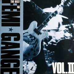 The Best Of Femi Gange Vol II - Femi Gange