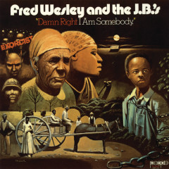 Damn Right I Am Somebody - Fred Wesley And The J.B.'s