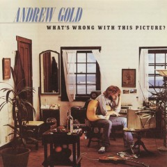 What's Wrong with This Picture? - Andrew Gold