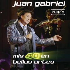 Mis 40 En Bellas Artes (En Vivo Desde Bellas Artes, México/ 2013/ Parte 2) - Juan Gabriel