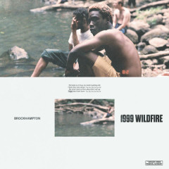 1999 WILDFIRE (Single)
