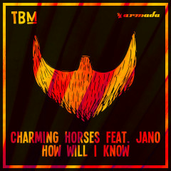 How Will I Know (Single)