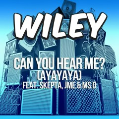 Can You Hear Me? (ft. Skepta, JME & Ms D) - Wiley