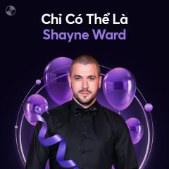 Chỉ Có Thể Là Shayne Ward - Shayne Ward
