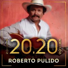 Visíon 20.20 Éxitos - Roberto Pulido