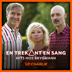 En Trekant En Sang 5 - Hits Hos Brygmann - Various Artists