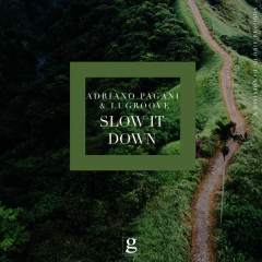 Slow It Down (Single) - Adriano Pagani, LuGroove