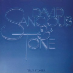 True Stories - David Sancious,Tone