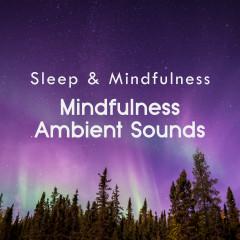 Mindfulness Ambient Sounds (Sleep & Mindfulness) - Sleepy Times, Amazing Spa Music, Nature Ambience