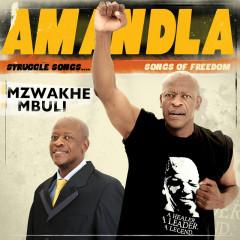 Amandla - Mzwakhe Mbuli
