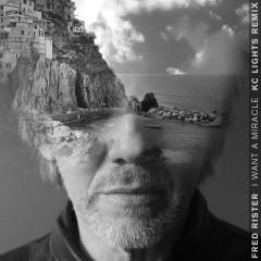 I Want a Miracle (feat. Sam Martin & Chris Willis) [KC Lights Remix] - Fred Rister, Sam Martin, Chris Willis