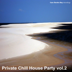 Private Chill House Party Vol.2 - Various Artists