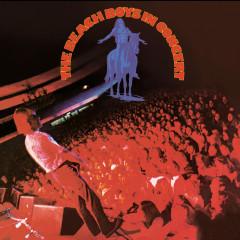 The Beach Boys In Concert - The Beach Boys