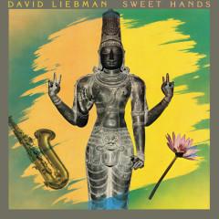 Sweet Hands - David Liebman