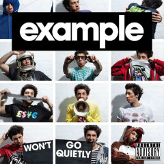 Won't Go Quietly (Deluxe Version) - Example