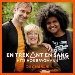 En Trekant En Sang 4 - Hits Hos Brygmann - Various Artists