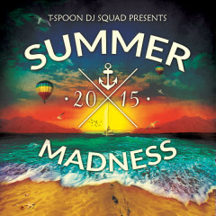 Summer Madness - Various Artists