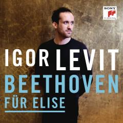 Für Elise, Bagatelle No. 25 in A Minor, WoO 59 - Igor Levit