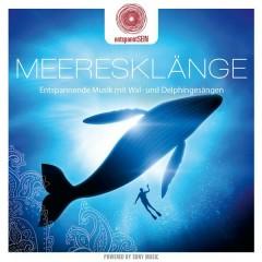 entspanntSEIN - Meeresklänge (Entspannende Musik mit Wal- und Delphingesängen) - Davy Jones